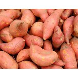 Patates Douce 1 kg