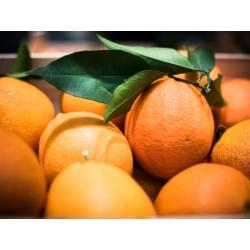 Oranges de table 1kg