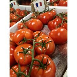 Tomates grappe Loiret