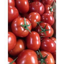 Tomates rondes 1kg Loiret